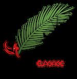 Phoenix Elagage